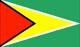 圭亞那 Flag